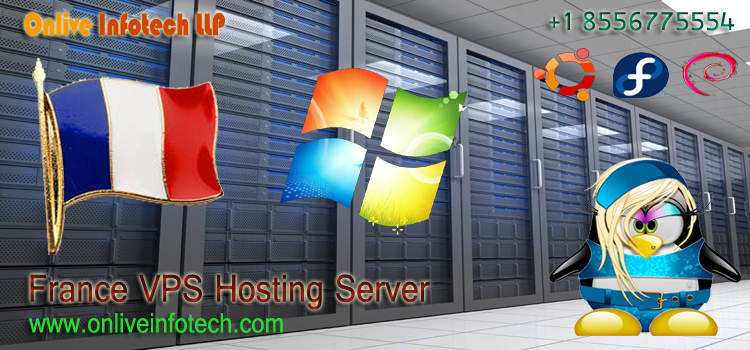 Why Choose France Virtual Private Server Hosting For Your Website?