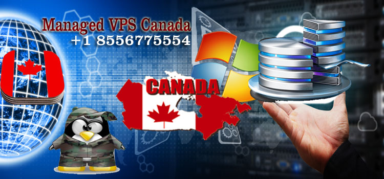 How are Managed VPS Canada useful for an organization?