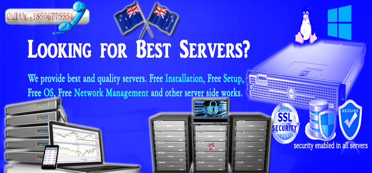 Some Imperative Insights into VPS Hosting and Dedicated Servers Hosting
